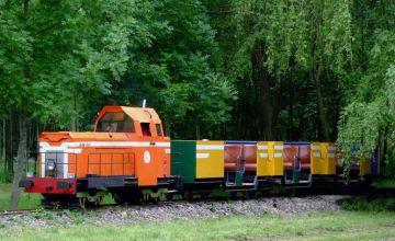 Le petit train de Champignelles