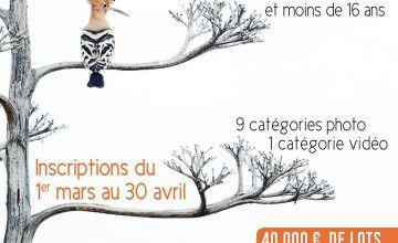 Concours International de Photo Nature 52220 MONTIER-EN-DER